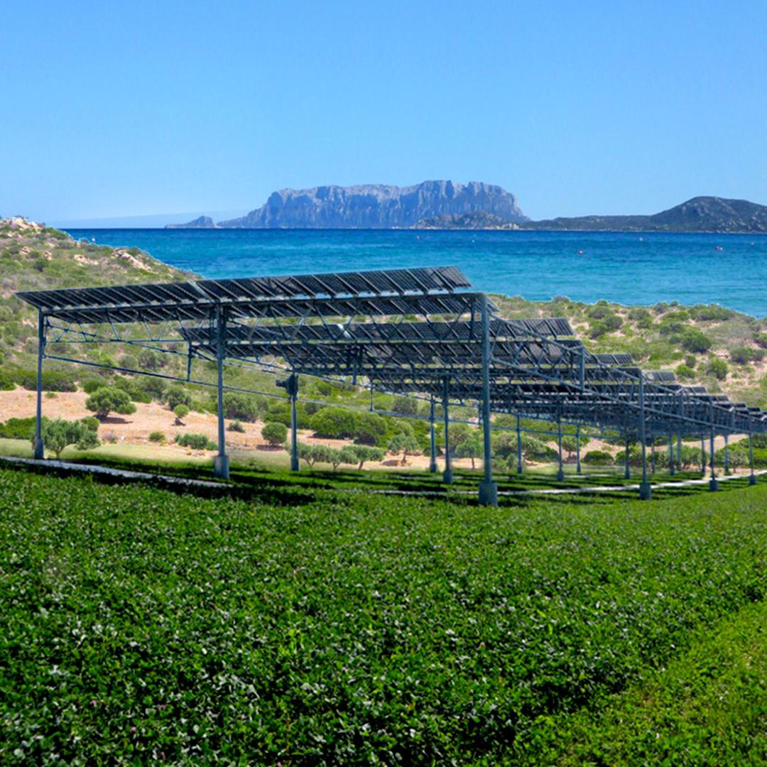 wwf_fotovoltaico_sardegna_1080x1080_nologo